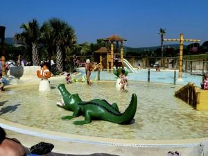 equipement-piscine-parc-aquatique-jeux-d-eau-animaux-marins-300x225