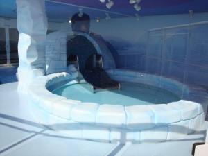 materiel-piscine-parc-jeux-aquatique-igloo-300x225